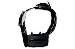 Garmin T15 Collar